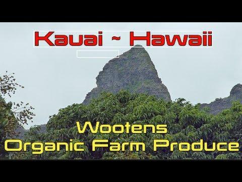 Wootens Organic Farm Produce