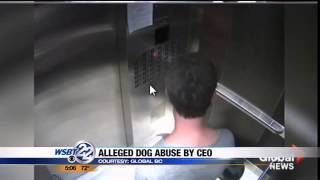 VIDEO: CEO of ND concessionaire caught kicking dog