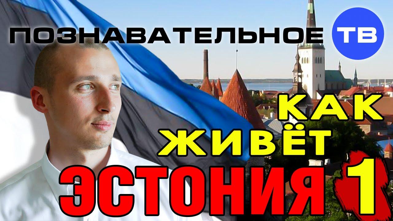 Как живёт Эстония 1 (Познавательное ТВ, Александр Румянцев)