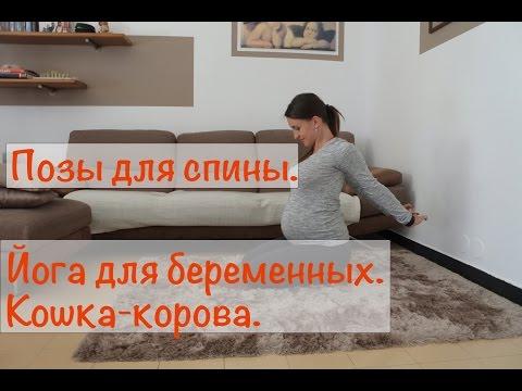 Упражнения для спины при беременности. Поза йоги Кошка-Корова.