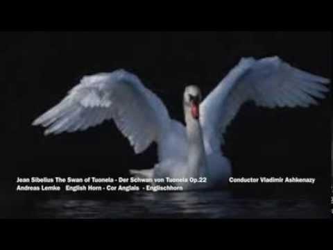 Jean Sibelius The Swan of Tuonela