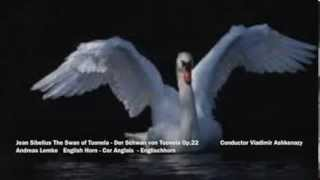 Jean Sibelius The Swan of Tuonela