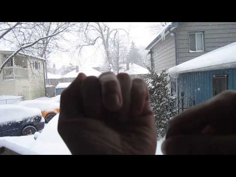 winter salute