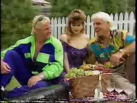 WWF Prime Time Ric Flair Perfect Picnic