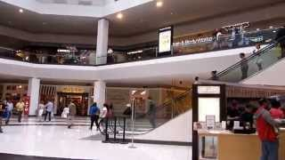 Parkour Reaction - QuakerBridge Mall