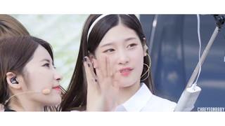 Jung Chaeyeon's 정채연 (DIA's/I.O.I's) Cute Moments Compilation Pt. II (2016-17)