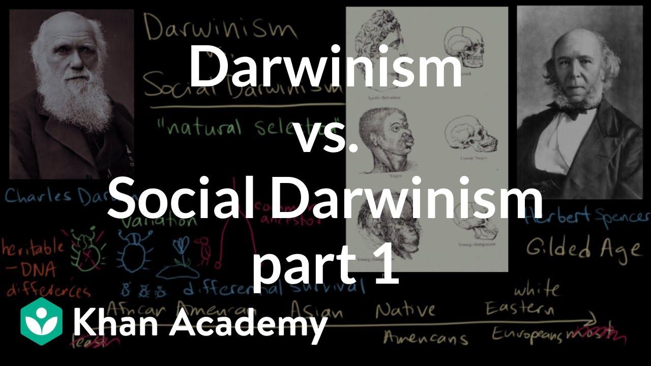 social darwinism definition
