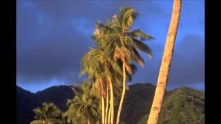 Blow Monkeys, The - La Passionara [HD]