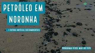 Óleo em Noronha, pesca com bomba em Salvador e mais notícias socioambientais