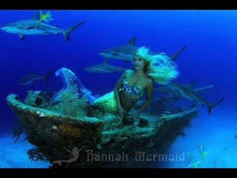 Barracuda Devours Lionfish from YouTube · Duration:  2 minutes 51 seconds
