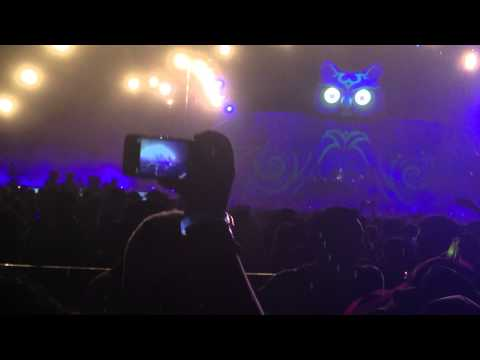 Bingo Players - Dragonfly by Dash Berlin VS Need You 100 by Duke Dumont at EDC  México 2014