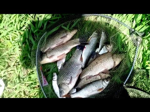 Семейная рыбалка на реке Дон 26.05.2017