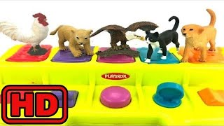 Kid -Kids -Learn Zoo,Farm, Pet Animals With Schleich  Safari Animal / Playskool Pop Up toy/Playing