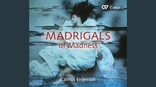 Madrigals, Book 6 (Il sesto libro de madrigali) : Lamento d