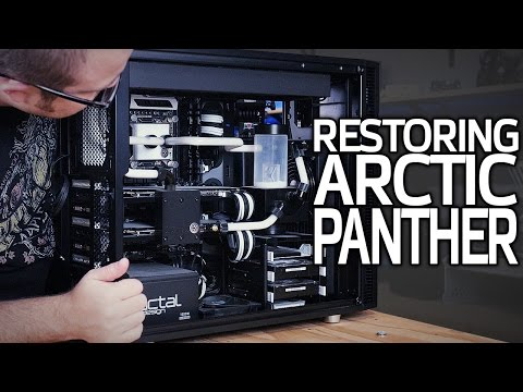 Restoring Arctic Panther! (After WAY Too Long)
