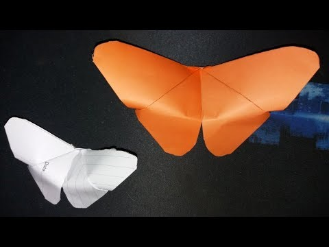 Hand Craft Paper Butterfly step by step