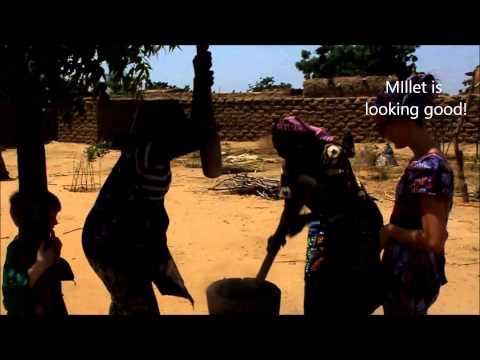 Niger, Africa 2013