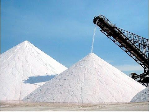 Dark Souls 3: The Quest for Salt