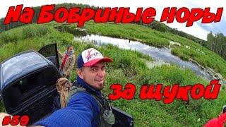 Рыбалка. Ловля щуки осенью на пруду(Рыбалка. Ловля щуки осенью на пруду На сегодняшней рыбалке мы с вами отправимся на поиски осенней щуки..., 2016-09-26T13:11:17.000Z)