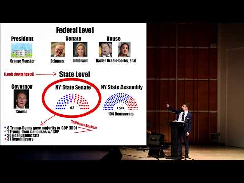Steven Boyer's hilarious NY statelevel government explainer you didn't know you needed