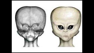 Оста нки гуманоида раскопали в Перу. Анализ ДНК  шокировал учёных. Как ЭТО попало на Землю.