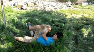 Как я дразнил собаку..Было больно!!