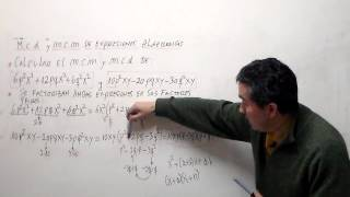 mcd y mcm de expresiones algebraicas