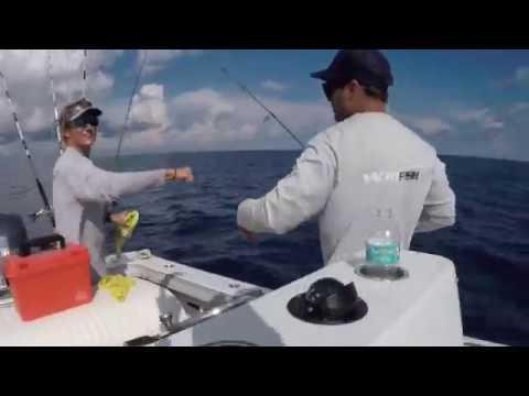 YACHTFISH Fishing Charters In St. Petersburg, FL