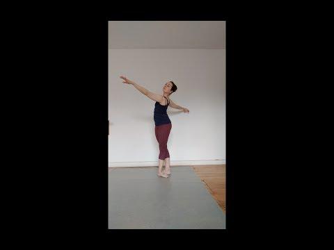 port de bras combination/ left side: ballet tutorial (beginner)