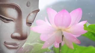 Nhạc Thiền Tịnh Tâm - Nhân duyên vợ chồng - nhạc thiền phật giáo hay nhất