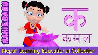 Nepali Learning Video Collection for Kids | Educational Videos and Nursery Rhymes from Nani and Babu