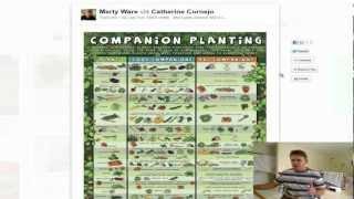 Companion Planting List Guide