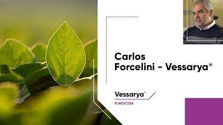 Carlos Forcelini