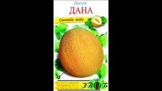 Семена дыни оптом(, 2013-04-07T14:32:56.000Z)