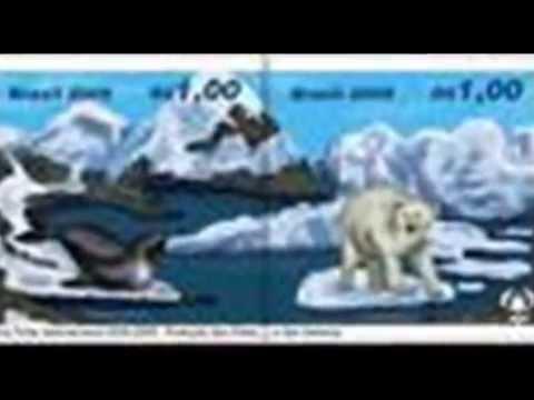 Polar Regions.wmv