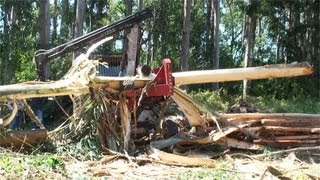 HYPRO 765 Processor Debarking Eucalyptus