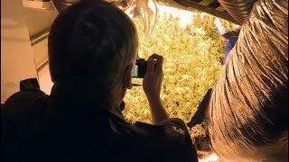 Trailer: Drogenfahnder in Hamburg