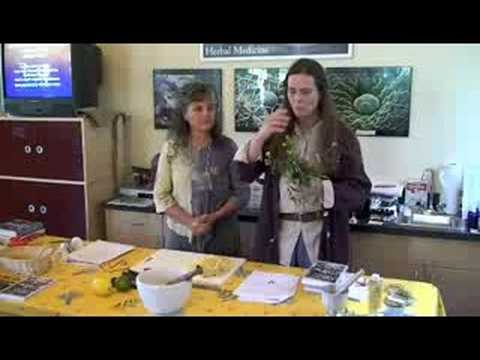 ACHS.edu Creative Herbal Home Part 1 Intro and Weeds