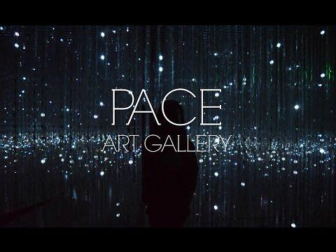 PACE Art Gallery - Palo Alto, CA