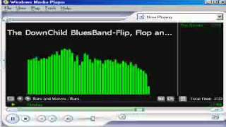 The Down Child Blues Band-Flip Flop Fly