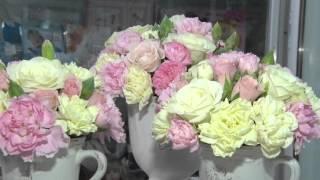 Цветы к 8 марта ДИА-ТВ Данилов