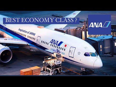 *2020*| BEST ECONOMY CLASS? | ANA All Nippon Airways | Flight Review | Tokyo-Brussels | B787