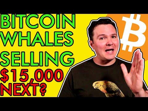 BITCOIN WHALES SELLING BEFORE PRICE CRASHES! 275 BILLION $$ FIRM BUYS BTC! [Still Bullish!]