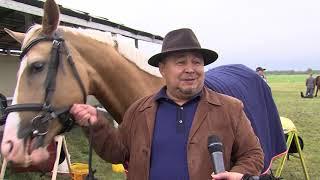 Дистанционные конные пробеги памяти Тимура Насырова 2018