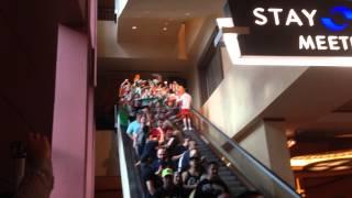 irish fans at ufc 178