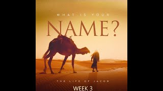 What is Your Name? - Week 3 , Septermber 5, 2021