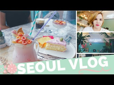 Korea Weekly Vlog: Teaching, Soul Food in Hapjeong, Brunch, Cafe in Sangsu