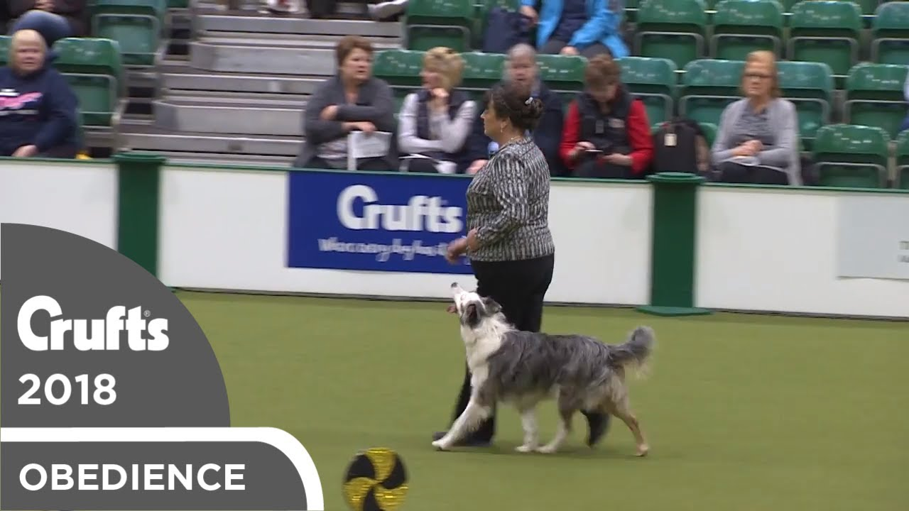 Obedience - Dog Championship - Part 4   Crufts 2018