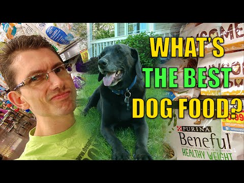 How we SAVED our DOG from Alzheimer's. BEST DOG FOOD! Weight loss. Doggy diets!