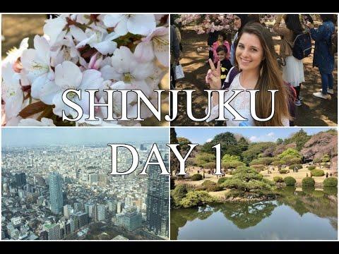Shinjuku Gyoen-Japanese McDonald's-7 Eleven Food   Tokyo Vlogs Day 1
